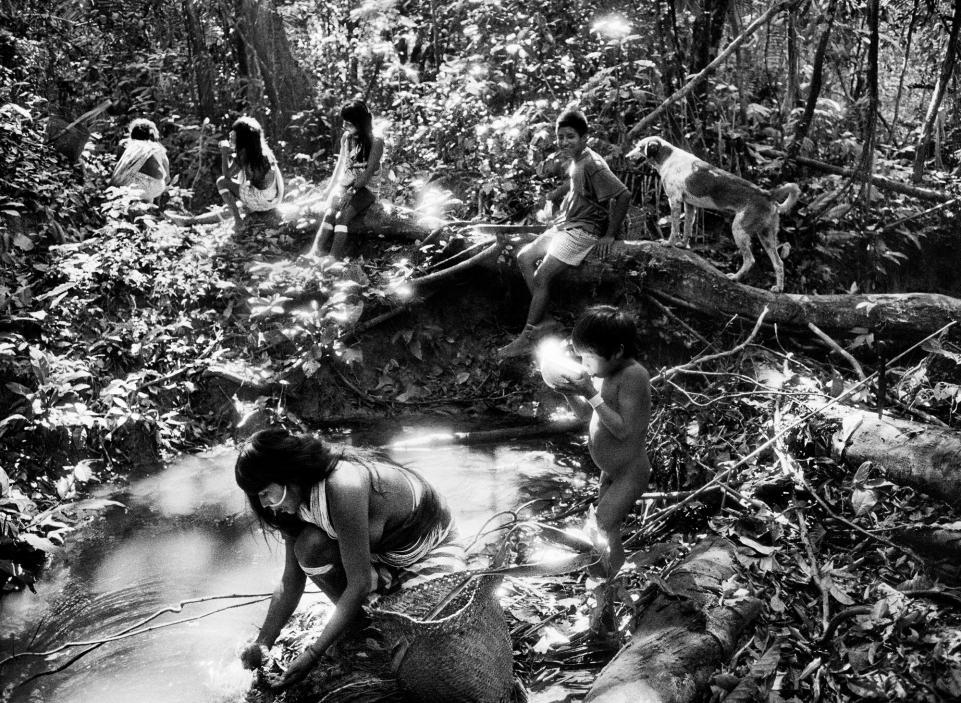 Visuel Expo: Salgado Amazônia